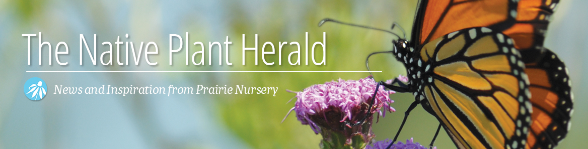 The Native Plant Herald